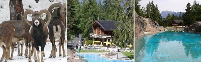 Dierentuin en zwembad van Les Marécottes