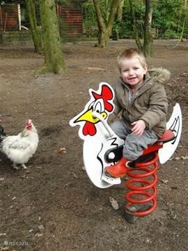 Ook de kinderen kunnen zich heerlijk buiten vermaken, samen met de kippen die u overal in ons park kunt tegenkomen.