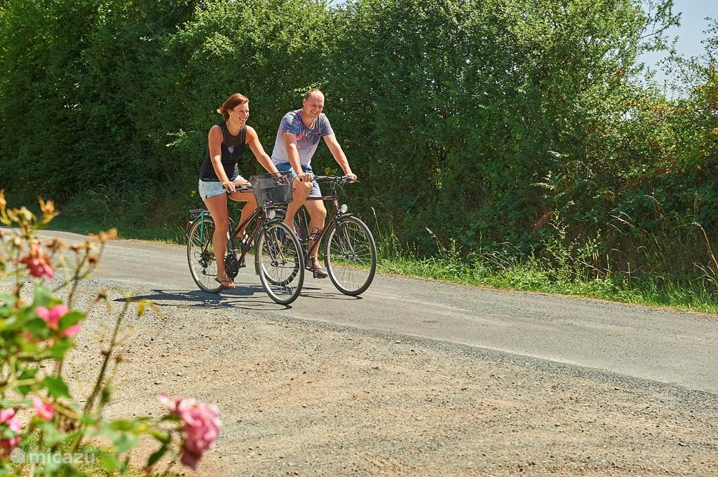 Cycling together in the area