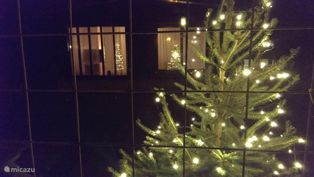 De kerstboom in de tuin is voorzien van kerstverlichting voor extra sfeer tijdens de feestdagen.