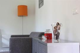 Woonkamer voorzien van meubels met een modern design, gecombineerd met originele retro accessoires.