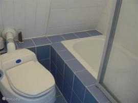 kleine badkamer met douche in bad en toilet