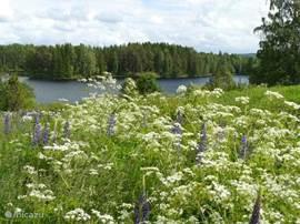 Uitzicht op het Askesjön