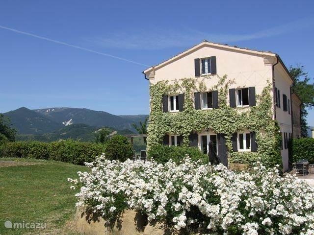 Luce Rental Properties