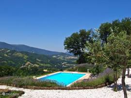 Groot zwembad met een geweldig uitzicht.