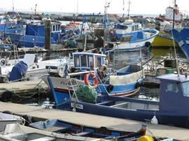 vissershaven in Setubal als u naar troia rijdt dit ligt op zo'n 40 km van het huis daar kan u over steken naar Setubal met de ferry Setubal is een prachtig stadje met pittoreske straat en heerlijke visrestaurantjes en zeker niet duur!