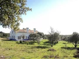 Dit is het huis van uit de olijfgaard gezien