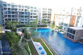 Tropische tuin met 2 grote zwembadden