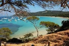 Het Middellandse Zee eiland Porquerolles is een interessante dagtocht (vanuit Hyères/Toulon). Prachtig eiland, mooie subtropische bloemen/planten/bomen, wandelen, fietsen, luieren op het strand, veel restaurantjes, fotograferen en nog meer ...