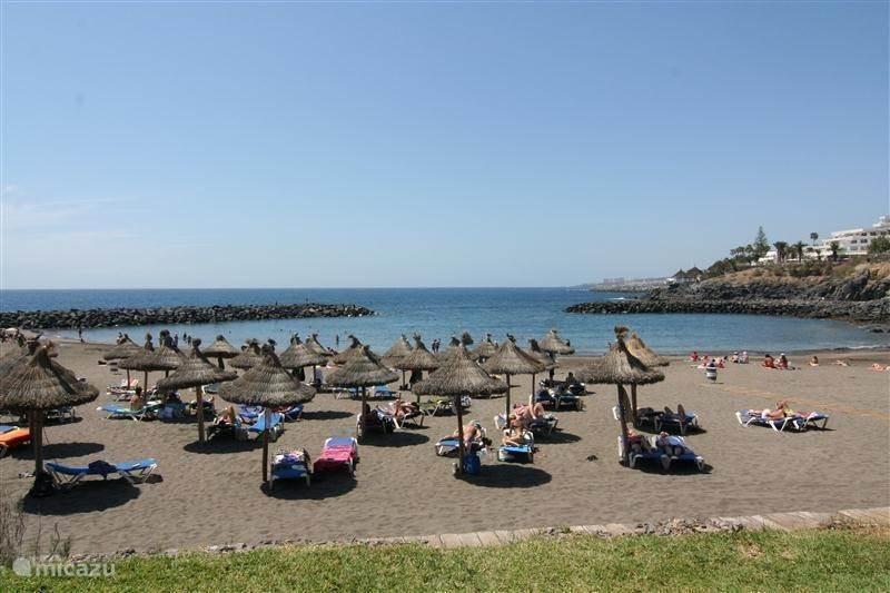Vakantiehuis Spanje, Tenerife, Playa de las Américas Appartement Borinquen