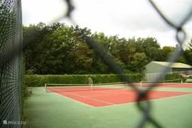 tennisbaan op het park gelegen