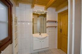 badkamer op de begane grond met douche en verwarmd handdoekenrek