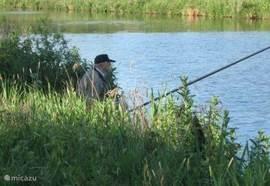 Of even rustig een visje vangen. Hiervoor kan men een vis-kaart kopen.