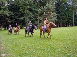 paardrijden, 20km afstand van het huis. je kunt er paarden huren en vrij in de natuur rijden. Wij bieden ook een vol arrangement paardrijvakantie aan. €395 p/p. Inclusief huurauto, ontbijt, lunch en diner. Voor meer info kunt u ons mailen