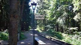 Czech-Canada railway through the woods.