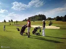 Golfreizen boekt u voordelig bij villa happy reizen, dé specialist voor uw golfreis naar Tsjechië!  Golfen op 18 holes banen.
