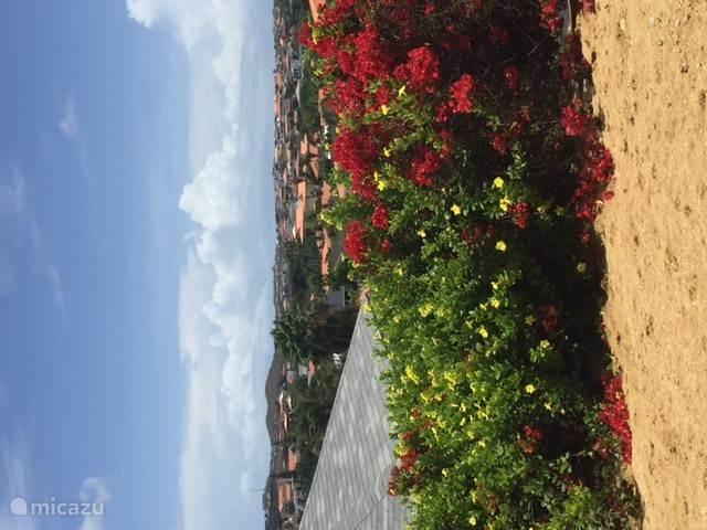 Vacation rental Curaçao, Banda Ariba (East), Jan Thiel apartment Serenity Apartment