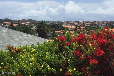 Vakantiehuis Curaçao, Banda Ariba (oost), Spaanse Water - appartement Apartment Serenity