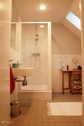 Badkamer op de eerste verdieping voorzien van wastafel, douche en toilet