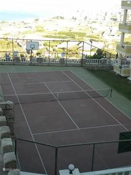 tennis plein