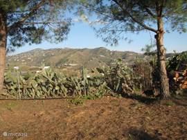 Casita Balcón de Andaluz staat op een landgoed van 6000M2 met mediterrane begroeiing.