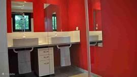 Badkamer 1 met glazen inloopdouche