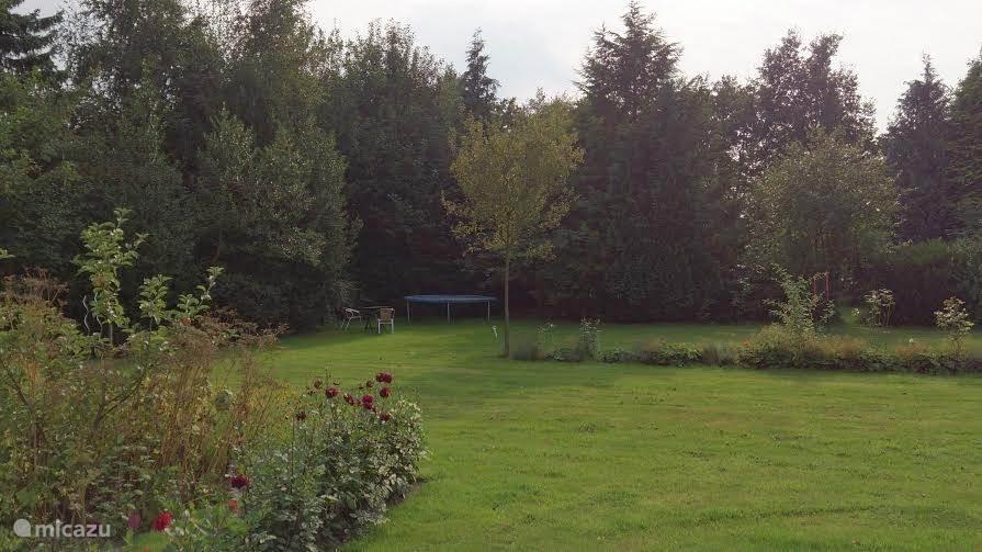 De achtertuin met speelveld