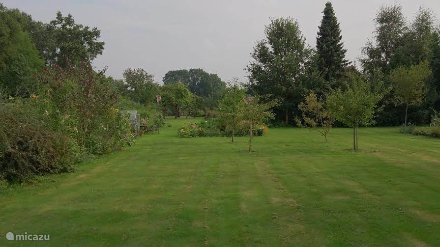 De achtertuin