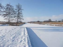Als er ijs ligt stapt u zo vanaf de stijger het ijs op! Heerlijk lange schaatstochten kunt u maken en er worden veel tourtochten georganiseerd. Houdt u liever van wandelen, de sneeuw geeft Dwarsgracht en omgeving iets sprookjesachtig en is zeker de moeite waard om te ontdekken!