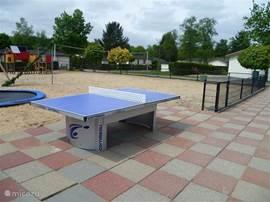 Naast de PLAZA ligt een kinderspeelplaats met zand, trampoline en tafeltennistafel. Badjes en ballen zijn in de Plaza te leen. Gratis uiteraard.