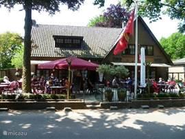 In het dorpje Kootwijk liggen diverse restaurants met terras om heerlijk te relaxen en te dineren. Probeert u ze gerust allemaal! Elk restaurant heeft zo z'n eigen sfeer, overal bent u even welkom. Welke kiest u?