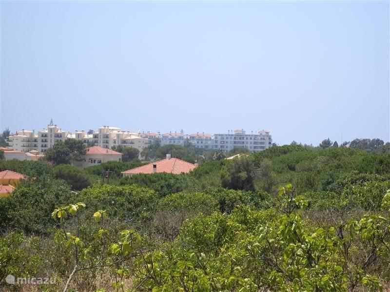 Oase in het drukke Algarve.