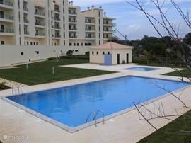 Achter aanzicht met groot zwembad en kinderbad. Tevens is er een groot zonneweide. Natuurlijk geheel afgeschermd.