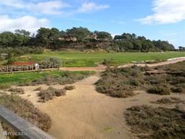 Natuurpark richting Faro