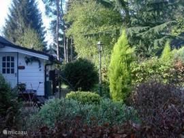 De tuin en entree achter