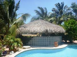 Adjacent to the pool is a huge palapa where you can relax in the shade
