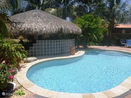 Het fantastische zwembad, wat geleidelijk afloopt. Zorgt u voor de zwembandjes van de kinderen dan gaat de rest vanzelf!