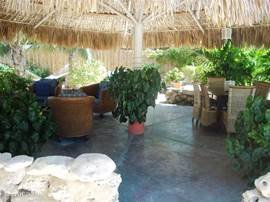 Outside under the palapa