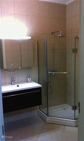 Second bathroom with shower and washbasin cabinet.