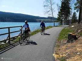 A newly constructed bike path along the lake Lipno guarantees a fun day out. Starting point is Frymburk.