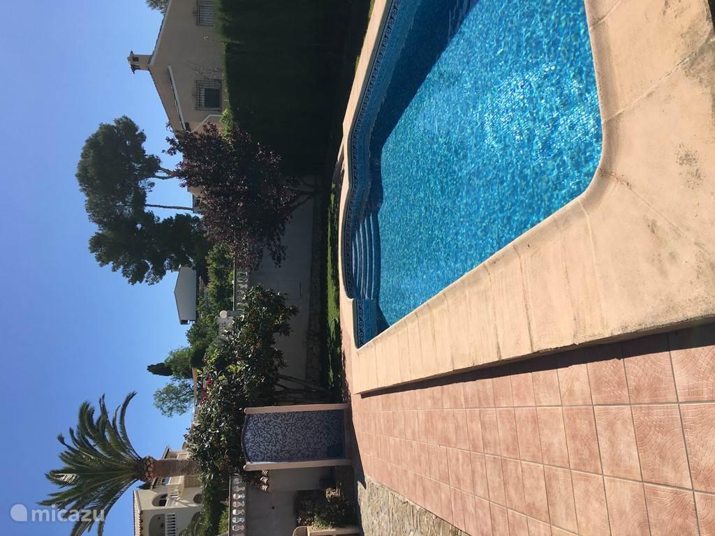 Privezwembad 8x4 met inlooptrap en deels omgeven door gras