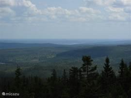 Uitzicht vanuit een uitzichttoren in het natuurreservaat Kindla.
