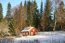 Het huis aan de bosrand in de winter