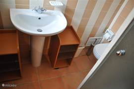 2e badkamer met wastafel, douche en toilet.