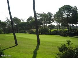 De green van de laatste hole van de prachtige 27 holes Championships Course van Vila Sol.