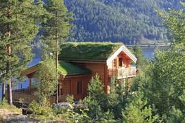 Huisje met de ruime veranda, gras op het dak en een ruim grondstuk er omheen!