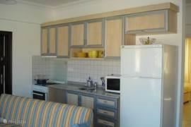 keuken met microgolf, electrisch vuur met één gasbekken, oven, afwasmachine, enz.