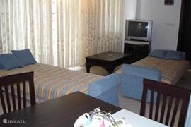 woonkamer met zetels die je kan als bedden openen zoals hier op foto