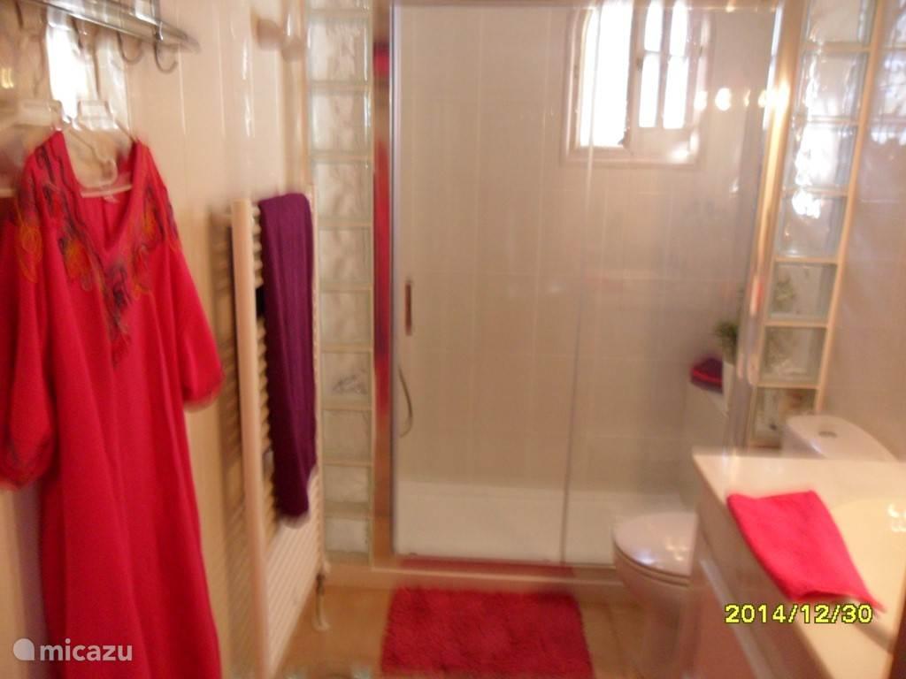 Badkamer ensuite met inloop douche.