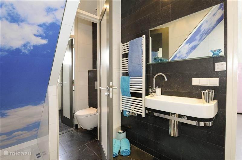 Vakantiehuis Nederland, Zuid-Holland, Noordwijk vakantiehuis Noordwijk Zon Zee en Duinen